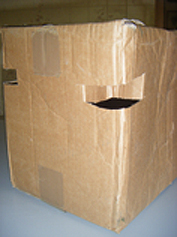 Cardboard box with good airholes